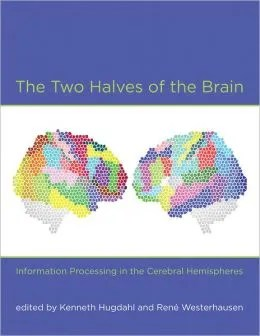 two_halves_brain