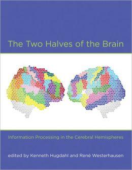 two_halves_brain