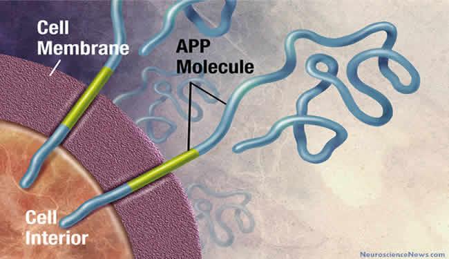 alzheimers-disease-app-gene-public