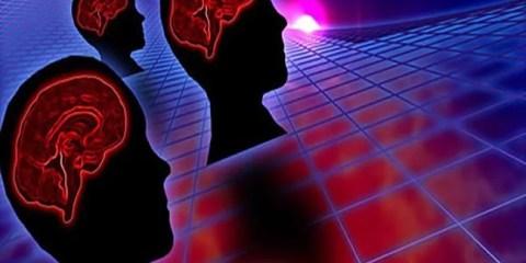 brains-intelligence-network
