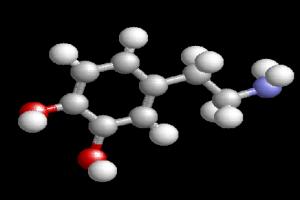 dopamine-gene-academic-performance