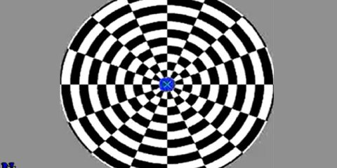 motion-aftereffect-optical-illusion