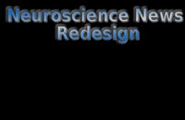 neuroscience-redesign