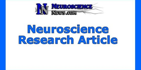 neuroscience-research-article8