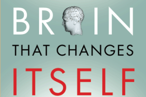 This is a copy of the brain that changes itself.