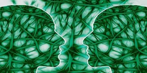big mirror neuron language