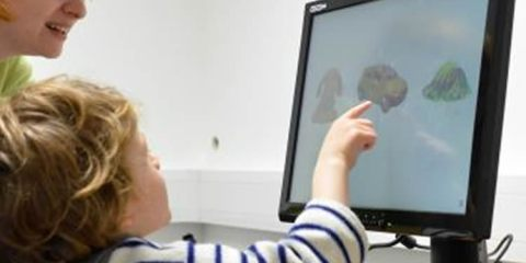 This image shows the researcher and a child looking at a computer screen.