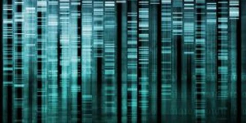 This image shows a representation of DNA sequencing.
