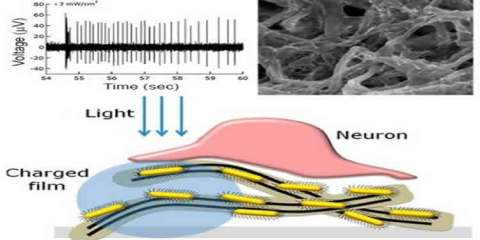 The image is a diagram which shows how the nanotubes and rods are used to stimulate the retina.