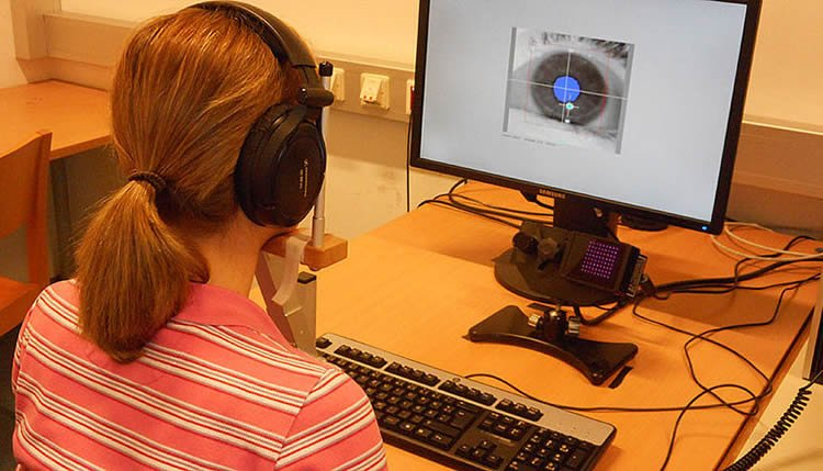 Researcher looking at a computer monitor with a pupil on it.