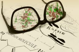 Image shows drawings of serotonin neurons and reading glasses.