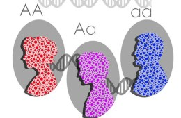 Image shows three people with DNA strands connecting them.