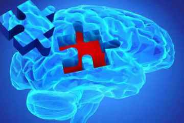 Image shows a blue brain with a jigsaw piece.
