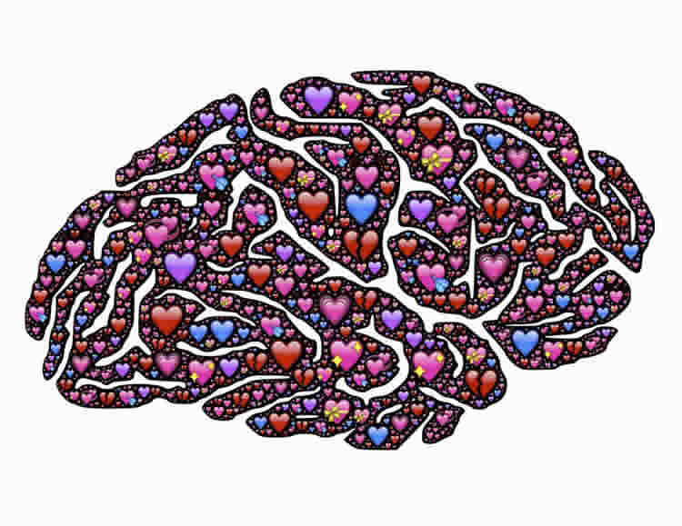 Image shows a brain and hearts.