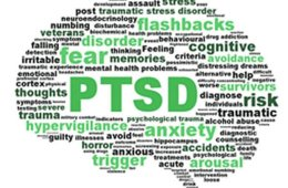 Image show the shape of a brain made up of words associated with PTSD.