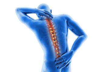 Image highlights the spine.