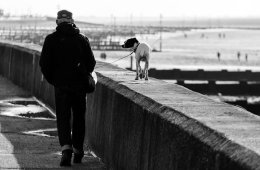 Image shows a man walking a dog along a beach wall.