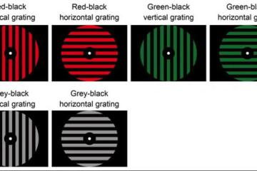 Image shows different color discs.