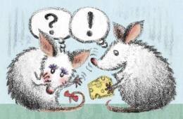Image shows a cartoon of a male mouse trying to woo a female mouse with cheese.