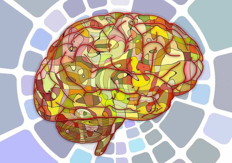 Image shows a colorful brain.