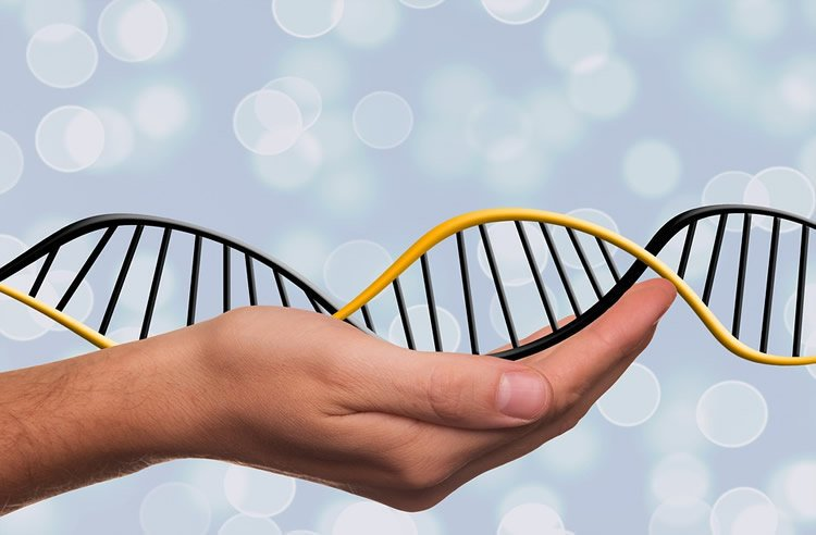 Image shows a hand holding a DNA double helix model.