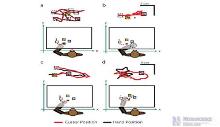 Feeling Robotic Arms Improved Brain Machine Interface Performance