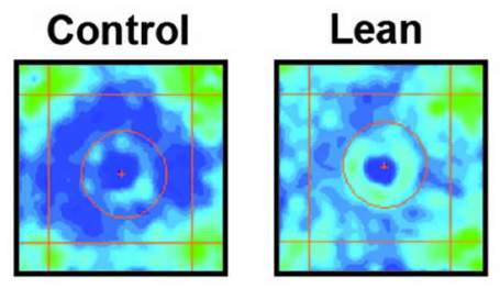 Control and lean animal paths are shown side by side. Caption describes well.