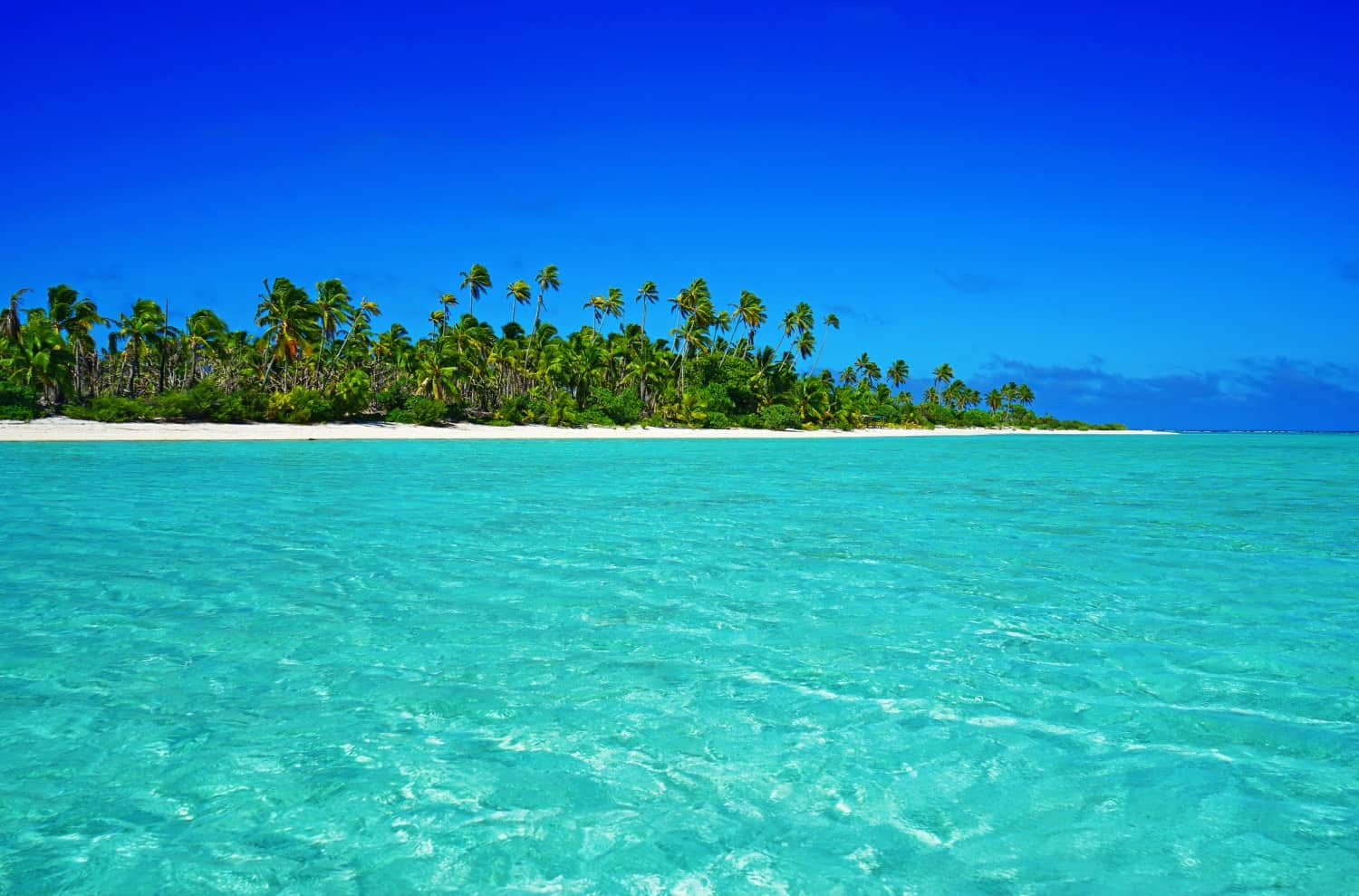 Cooking Island How To Travel The Cook Islands On A Budget It 39s Possible