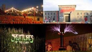 harvest festival montage