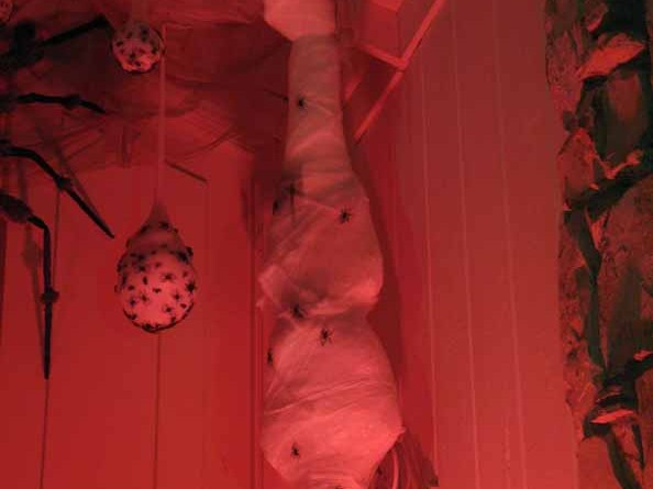 mourning rose manor spider victim