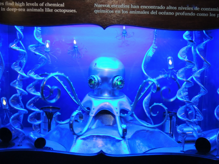 Several steampunk-style artistic displays convey the urgency of protecting cephalodpod habitats.
