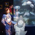 Aquarium of the Pacific Halloween Sleepover