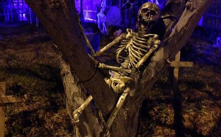 coffinwood-cemetery-2016-skeleton-in-tree