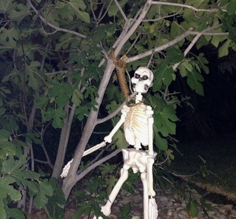 Despondent skeleton ends it all at a house near Garden Path of Doom.