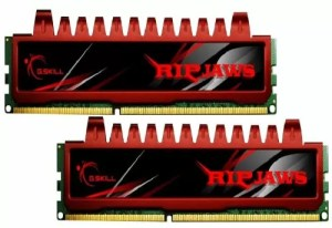 An example of a multi-channel RAM memory kit