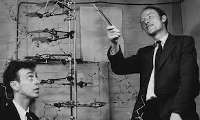 watson_crick_dna_discoveryii