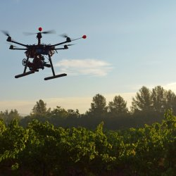 Drone over vineyard_Getty_Sept2014_1500px