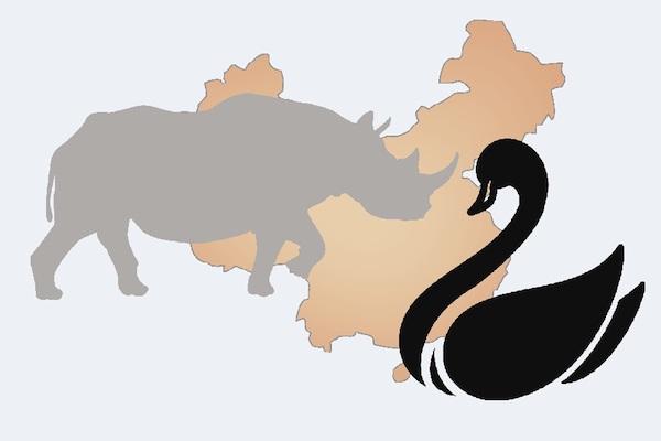 新冠病毒的灰天鵝加上人為政經因素的灰犀牛,為台灣前景增添風險。 圖片來源:工商時報