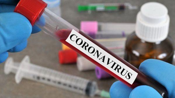 新冠病毒相關的研究數量激增。 圖片來源:BBC