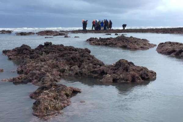 藻礁公投近來吸引民眾關注。 圖片來源:風傳媒