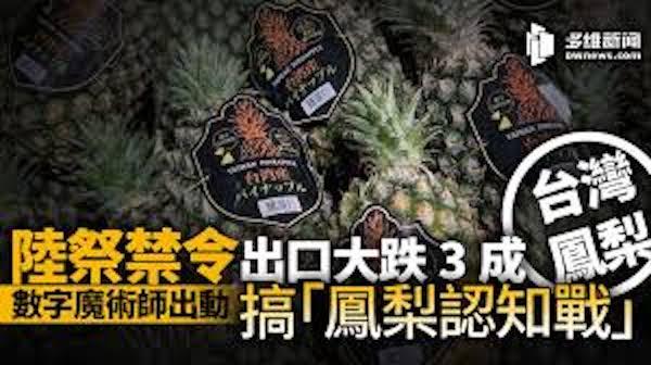 中國的鳳梨禁令是中共政治操作。 圖片來源:多維新聞