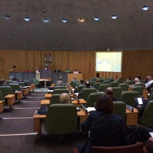 CouncilSpeech2016_SW (14)
