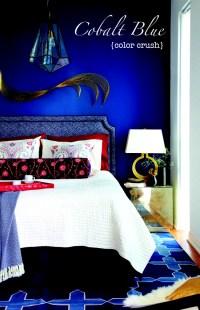 Cobalt Blue Fashion & Home Dcor