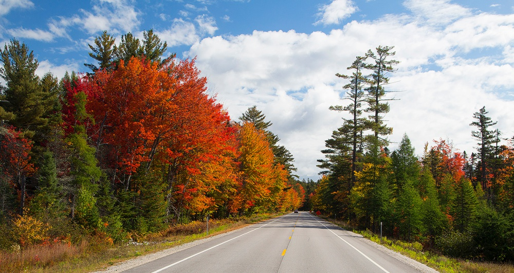Vermont Fall Foliage Wallpaper The Kancamagus Highway The Ultimate New Hampshire Fall