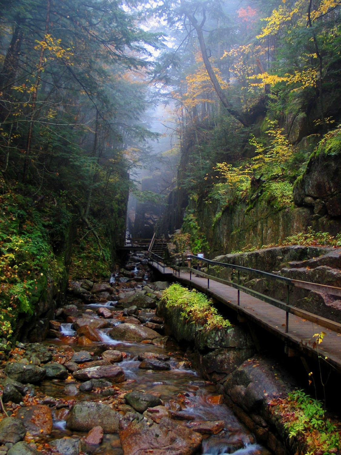 New England Fall Wallpaper Free Flume Gorge In Fall New England Today