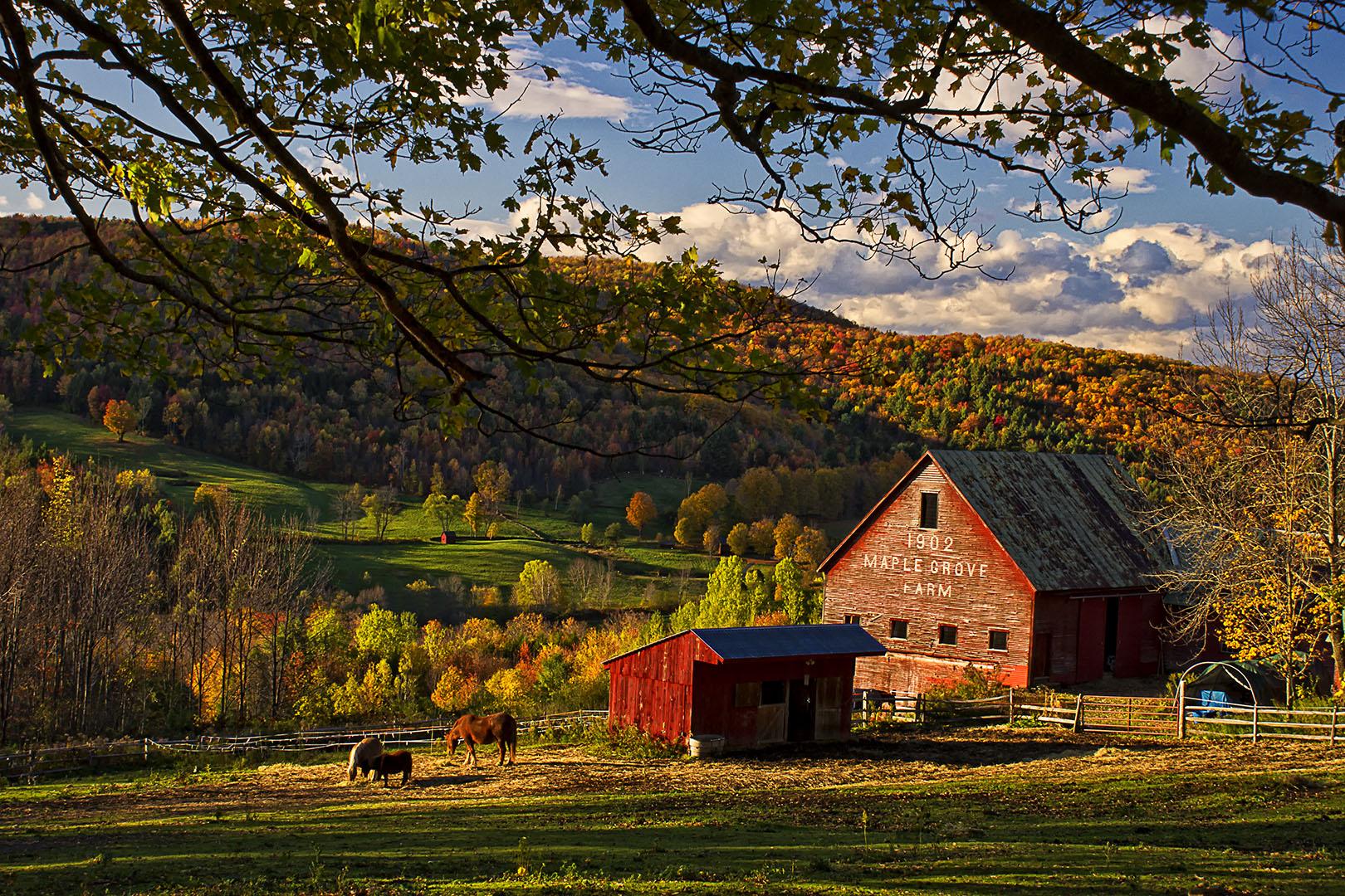 Fall Cape Cod Wallpaper Sunset At Maple Grove Farm In E Barnard Vermont New