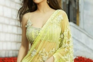 Beautiful Stylish Party Wear Sarees Designs 2012