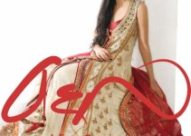 Asifa & Nabeel Latest & Stylish Bridal Collection For Girls 5