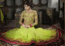 Luxury Attractive Anarkali Frocks Concepts 2014 for Eid Celebration (1)