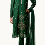 Bareeze Modern Excellent Winter Suits 2014-15 Collection (4)